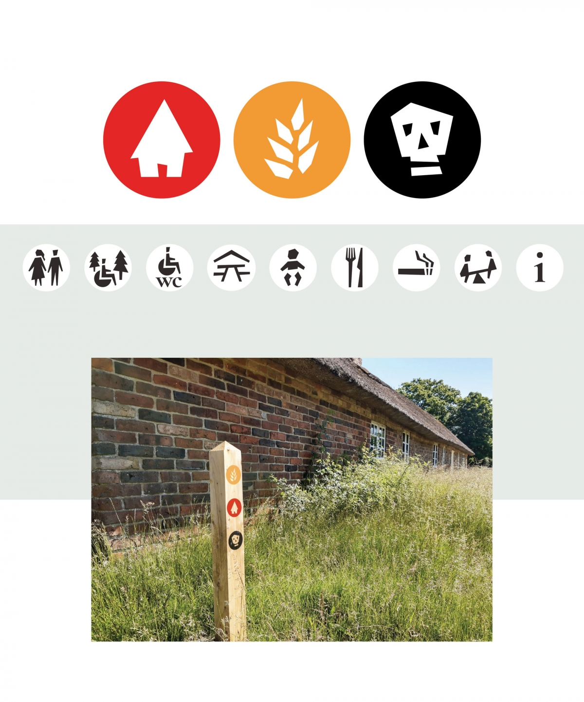 Iconography design for the new routes of the museum